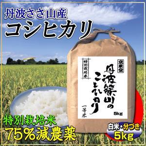 29年産 7.5割農薬減 コシヒカリ 5kg 兵庫県 丹波さ...