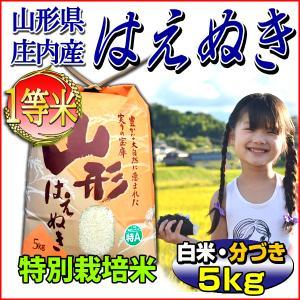 お米 5kg はえぬき 山形県 庄内産 白米 玄米 分づき可 一等米 特別栽培米 当日精米 令和2年...