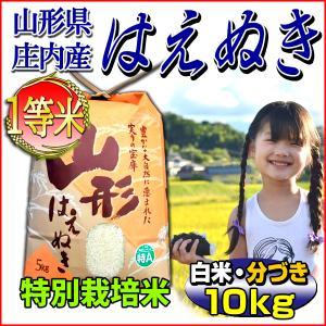 お米 10kg はえぬき 山形県 庄内産 白米 分づき可 一等米 特別栽培米 5kg×2袋  当日精...