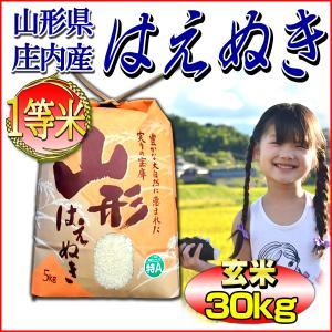 米 29年産 はえぬき 玄米30kg (5kg×6袋) 山形...