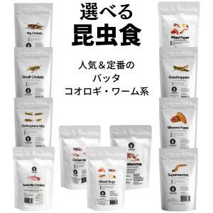 昆虫食 JRユニーク 食用 食べる虫 15g 4種の昆虫ミックス/グラスホッパー/コオロギ/サナギ・幼虫/カブトムシ 入門|kyomo-store