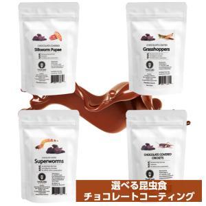 昆虫食 虫チョコ 食用虫 食べる虫 JRユニーク  チョコレート グラスホッパー/コオロギ/シルクワーム/スーパーワーム JR UNIQUE FOODS|kyomo-store