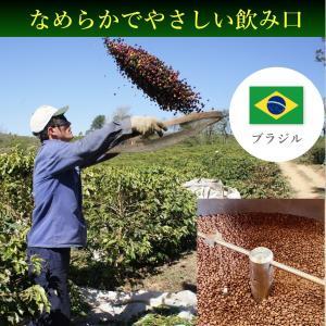 コーヒー豆 コーヒー 珈琲 250g ブラジル モンテアレグレ|kyoto-coffee