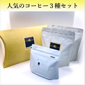 コーヒー豆  コーヒー  ギフト  珈琲  人気のコーヒー豆 3種類セット|kyoto-coffee