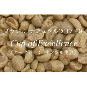 コーヒー生豆 159g Cup of Excellence 2017年 ブラジル ナチュラル 9位   MINAMIHARA OURO VERDE|kyoto-coffee
