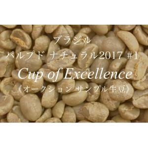 コーヒー生豆 135g Cup of Excellence 2017年 ブラジル パルプドナチュラル 1位   FAZENDA BOM JARDIM|kyoto-coffee