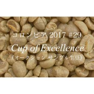コーヒー生豆 194g Cup of Excellence 2017年 コロンビア 29位  La Esperanza|kyoto-coffee