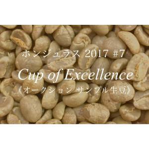コーヒー生豆 213g Cup of Excellence 2017年 ホンジュラス 7位   La Colmena|kyoto-coffee