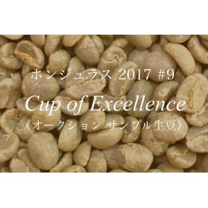コーヒー生豆 226g Cup of Excellence 2017年 ホンジュラス 9位  El Barrancon|kyoto-coffee