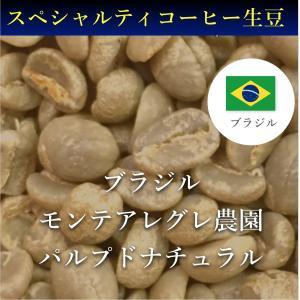 コーヒー生豆 コーヒー 珈琲 1kg ブラジル モンテアレグレ パルプドナチュラル kyoto-coffee