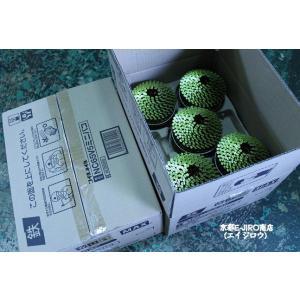 MAX マックスロール釘65mm NC65V5ミニバコ 300本×10巻×2箱 大箱(ワイヤ連結・スムース釘) マックス純正ロール釘 kyoto-e-jiro 02
