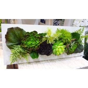 ハイクラスアレンジメント 多肉植物グリーン混合デザイン|kyoto-flower