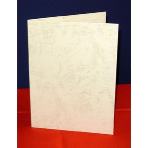 A6用【クリーム紙表紙】1枚収納用 証書ファイル 賞状ホルダ...