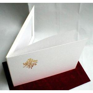 写真台紙 白表紙(紙製) ワイド(集合写真用) 片面  中抜きの形(ヨコ)|kyoto-marutaya