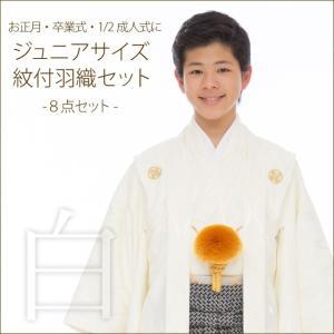ジュニア着物 男の子 ジュニアサイズの紋付き袴セット「白地、立涌に違い鷹の羽」HJM-Sy-M|kyoto-muromachi-st