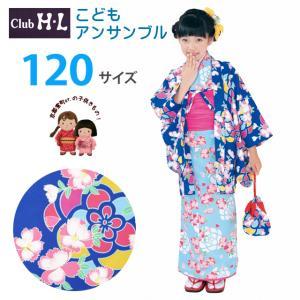 【少し訳あり】H・Lブランド 子供の着物アンサンブル 女の子 着物と羽織 6点セット 120cm「青×水色、なでしこ」HLEGset12-2907|kyoto-muromachi-st