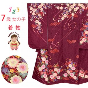 七五三 着物 7歳 女の子 絵羽柄の着物 四つ身 子供振袖 単品 合繊「エンジ、菊」KYP271|kyoto-muromachi-st