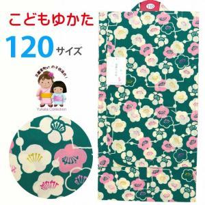 浴衣 子供 レトロ 古典柄 女の子 120 こども浴衣 単品「緑系、梅」TSGY-12-32|kyoto-muromachi-st