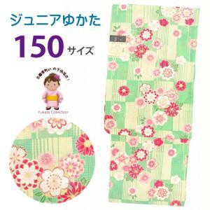 浴衣 子供 レトロ 古典柄 女の子 150 こども浴衣 ジュニアサイズ「黄緑系、格子に菊・桜」TSGYbj-15-27|kyoto-muromachi-st