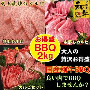 牛肉 肉 焼き肉 お歳暮 焼肉 焼き肉 焼肉セット (BBQ バーべキュー) 肉 国産 和牛 2kg ギフト グルメ お取り寄せ|kyoto1129