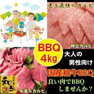 牛肉 肉 焼き肉 お歳暮 焼肉 焼き肉 焼肉セット (BBQ バーべキュー) 肉 国産 和牛 4kg  ギフト グルメ お取り寄せ|kyoto1129