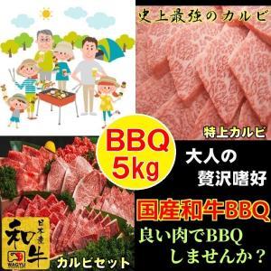 牛肉 肉 焼き肉 お歳暮 焼肉 焼き肉 焼肉セット (BBQ バーべキュー) 肉 国産 和牛 5kg  ギフト グルメ お取り寄せ|kyoto1129