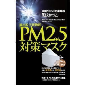 郵送でお届け送料無料お試し品PM2.5 対応 マスク N-9...