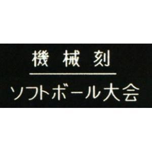 武道の大会などの表彰用として御勧めなトロフィー 楯 タグ メダルの各指定場所への彫刻サービスです。 ...
