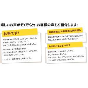 剣道 竹刀 訳無し普及型 床仕組竹刀 幼年〜高校|kyotobudougu|14