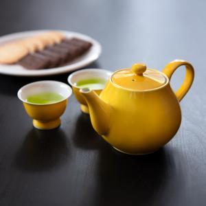 清水焼 京焼 ティーポット 急須 セット おしゃれ 黄色 緑色 陶器 洸春窯 手作り 和食器|kyotomarche