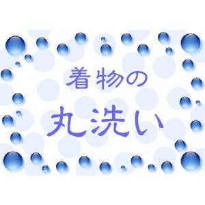 <訪問着、色無地、小紋、喪服、夏物>着物の丸洗い ari-002 kyouto-usagido