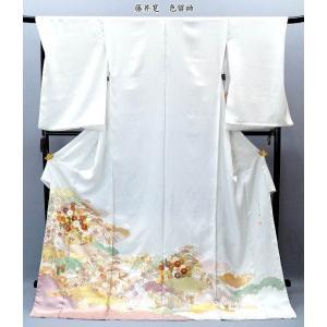 藤井寛 正絹 手描友禅 色留袖  ito-107 結婚式 フォーマル 礼装|kyouto-usagido