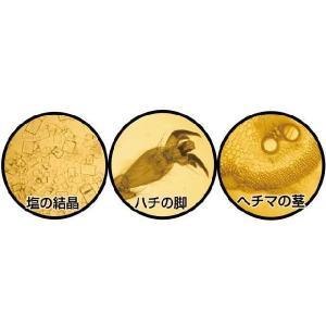 科学 実験工作 手作り顕微鏡|kyouzai-j|02