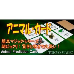 マジック 手品 アニマル・カード 簡単手品 マジシャン 余興 忘年会 新年会 パーティー 宴会 kyouzai-j