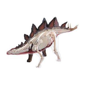 4D VISION 動物解剖 No.25 (ステゴサウルス解剖モデル)|kyouzai-j