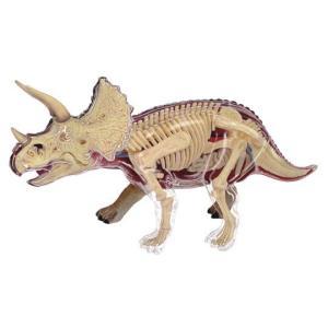 教材 模型  4D VISION 動物解剖 No.23 (トリケラトプス解剖モデル)|kyouzai-j