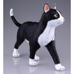【教材 模型】  4D VISION 動物解剖 No.29 (猫解剖モデル 黒/白)|kyouzai-j|04