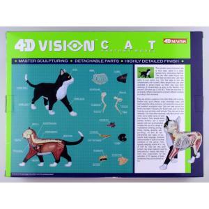 【教材 模型】  4D VISION 動物解剖 No.29 (猫解剖モデル 黒/白)|kyouzai-j|09