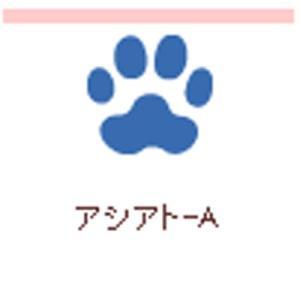 クラフトパンチ カーラクラフト スモールサイズクラフトパンチ(アシアトA )|kyouzai-j