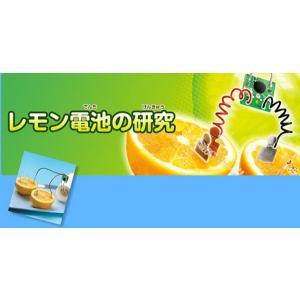学研 自由研究おたすけキット『レモン電池を作ろう』 kyouzai-j 03