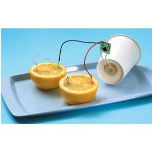 学研 自由研究おたすけキット『レモン電池を作ろう』 kyouzai-j 04