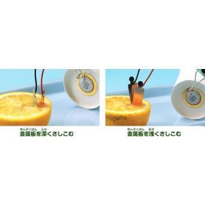 学研 自由研究おたすけキット『レモン電池を作ろう』 kyouzai-j 05