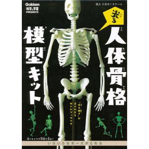 教材 おもしろ教材 光る 人体骨格模型」キット|kyouzai-j
