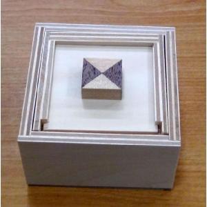 教材 おもしろ教材からくりパズル工作キット 向きを覚える箱|kyouzai-j