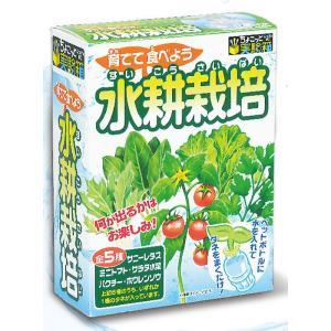 ペットボトルと水で種から育てる室内用の家庭菜園キットです。  何が出るかはお楽しみ!  全5種(サニ...