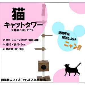 キャットタワー BA 突張り式 猫タワー 猫の遊具 おしゃれ ベージュ|kyplaza634s