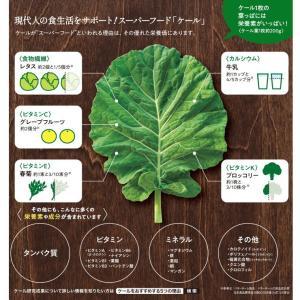 青汁 キューサイ ケール青汁(90g×7パック) 冷凍タイプ×6セット [ 国産 ケール100% 農薬不使用 ]|kyusai-kantou|03