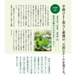 キューサイ青汁 ケール青汁 粉末タイプ 7g×30包 kyusaikenko 03