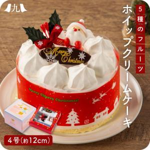 産地直送 2021年予約受付【クリスマスケーキ 5種のフルーツ入りホイップクリームケーキ 4号(12cm)】 送料無料|kyushu-sanchoku
