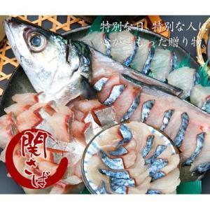 関サバ(関さば)姿刺身盛り 大1尾 (5人前)(送料無料)(鮮魚)(代引き不可)|kyushu-shouchu-club